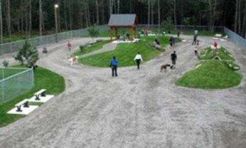 Création d'un parc canin