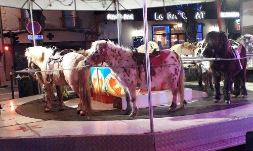 Pétition contre le carrousel à Poneys de Revel