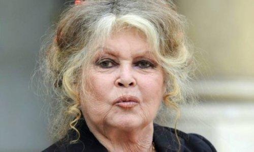 Plainte du peuple réunionnais envers Brigitte Bardot