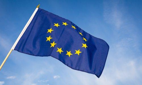 EELV, réveille-toi pour les élections européennes !