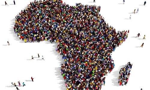 Pétition : RELATIVE A LA DESTRUCTION DU DIRECTEUR REGIONAL AFRIQUE DE L'IPPF