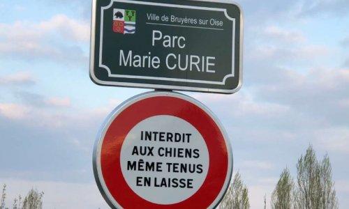 Non à l'interdiction des chiens dans le parc Marie Curie