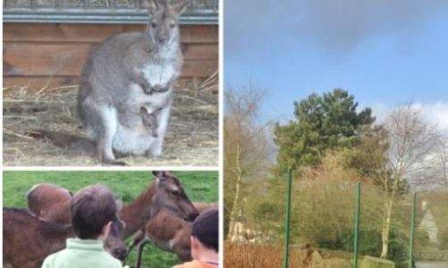 Pour la préservation du parc animalier de la Résidence Beau-Chêne