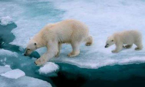Pétition : Il reste deux ans pour agir contre le changement climatique.
