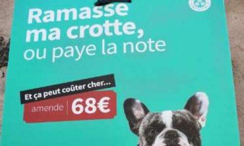 Pétition : Contre la stigmatisation de la race Bouledogue Francais par la ville de Grenoble.