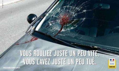 Mise en place de dispositif de ralentissement d'automobiles suite à des atteintes à la vie d'un animal causé par des vitesses excessives.