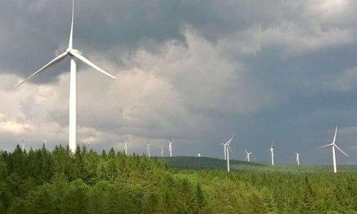 Pétition : Pas une éolienne de plus sur la montagne noire !