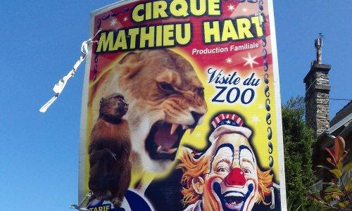 Contre les cirques avec animaux à PLERIN (22190)