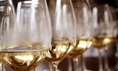 Contrôles d'alcoolémie lors des dîners diplomatiques, politiques ou protocolaires sur les Elus