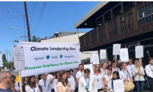 Pétition : Pour qu'Amazon change sa politique environnementale