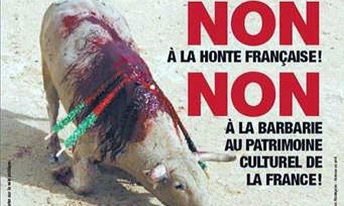 Soutenons AURORE BERGE et son projet d'interdire les enfants lors des corridas