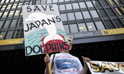 Pétition : Arrêt du massacre des dauphins au Japon.