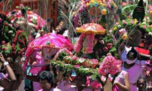 Stop aux sacrifices d'animaux au nom de la religion tamoule