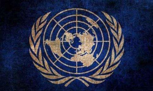 Pour la création des postes de représentant de la protection animale au sein de l'ONU