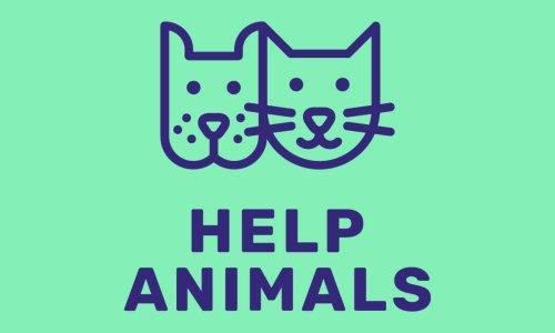 Pétition : Pour que l'Appstore accepte des applications mobiles qui viennent en aide aux animaux !