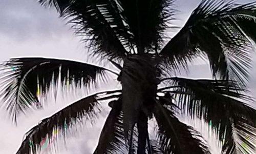 Pétition : Santiago de Cuba Allonger la saison touristique / Lengthen the tourist season