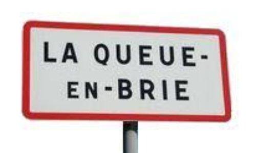 Pétition : Sècheresse 2019 dans la Résidence des Manières à la Queue en Brie