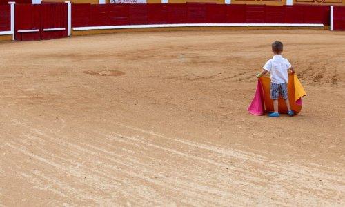 Pétition : Pour la fermeture des écoles de corrida