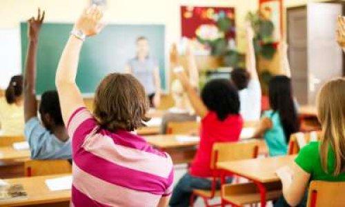 Pour une sensibilisation des élèves à la cause animale dès la primaire et jusqu'en Terminale