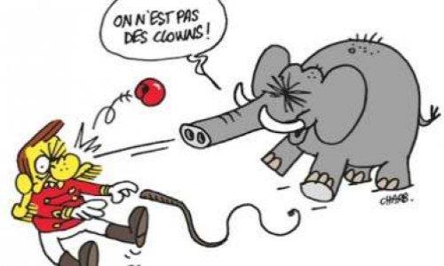 Pour des cirques sans animaux sauvages à Lisieux