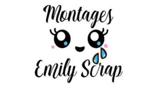 Réouverture de la boutique de Montages Emily Scrap sur Etsy
