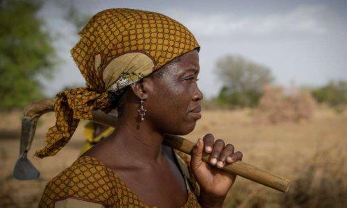 Pétition : Restaurer les terres au Sahel, une solution pour la paix - Aidez-nous à agir - #SOSSAHEL