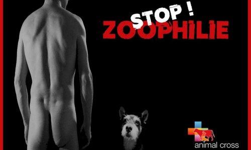 Pétition : Stop à la diffusion d'images et d'annonces zoophiles sur internet !