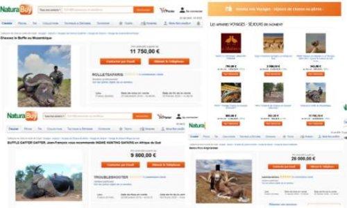 Stoppons la campagne 2020 des safaris chasses du site NaturaBuy
