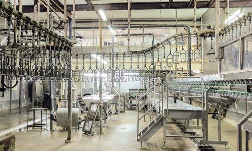 Obligation de traçabilité et de contrôle sanitaire de l'abattage