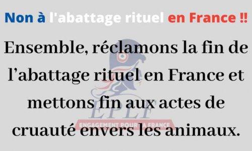 Non à l'abattage rituel en France !!