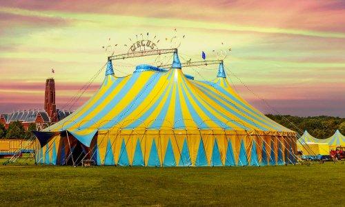 Cirques sans animaux à Ormesson
