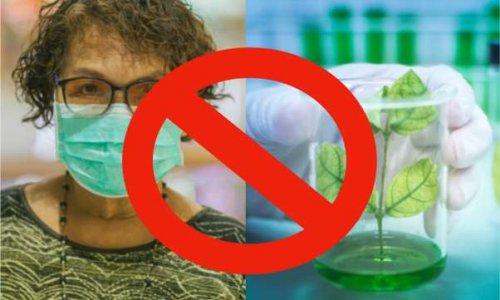 CORONAVIRUS : L'UE censure les remèdes naturels !