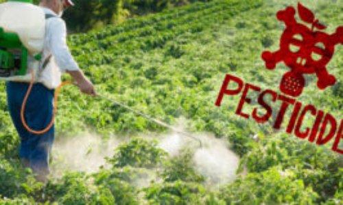 Signez et partagez pour stopper les pesticides et les produits chimiques.