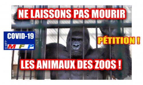 Pétition : COVID-19 : Ne laissons pas mourir les animaux des zoos !