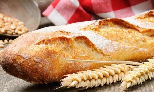 Pour un ravitaillement en pain passif, bio et équitable