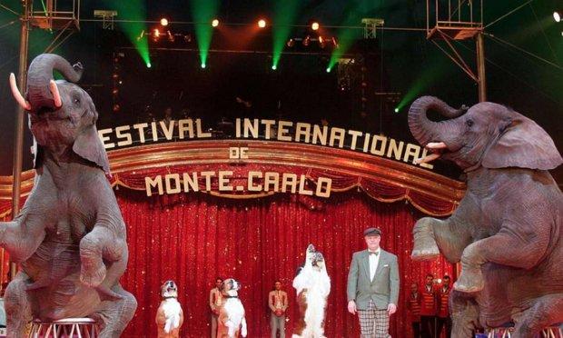 Non aux animaux dans le cirque de Monaco !