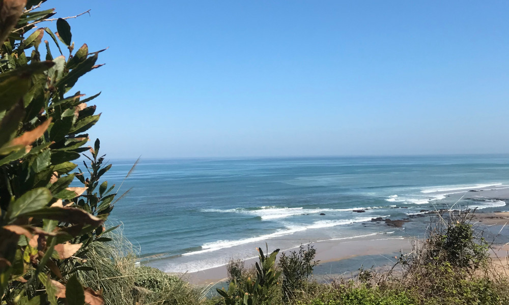 Dérogation de droits à l'enseignement du surf