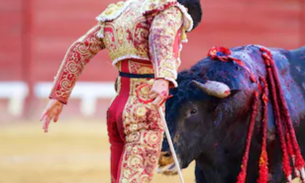 """Poème militant pour l'interdiction définitive de la corrida: """"L'adieu au fier taureau du pays de  Camargue"""""""