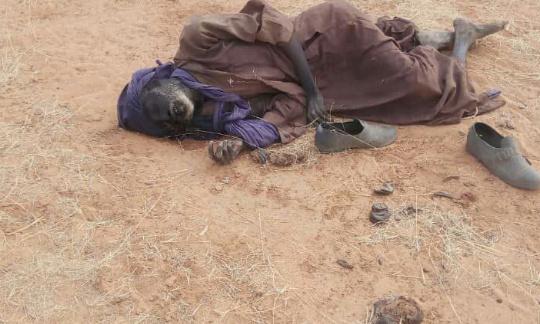 Pétition : Stop au massacre de civils à Tillaberi/Niger
