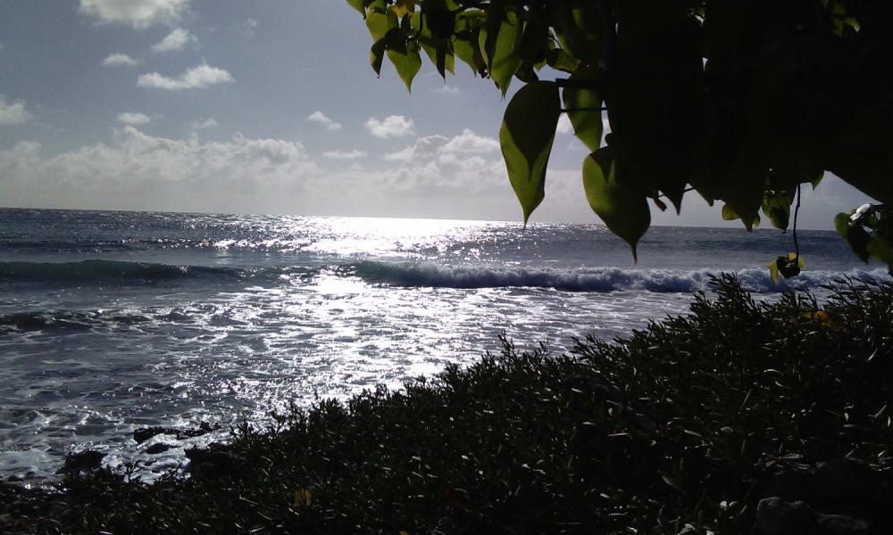 Reprise des sports nautiques non motorisés en Guadeloupe