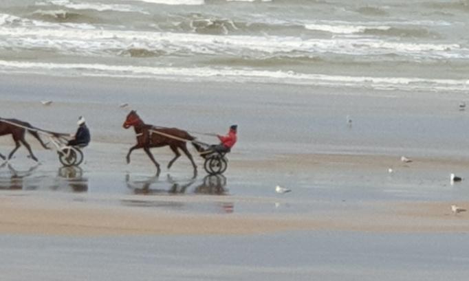 Réouverture des plages normandes et bretonnes