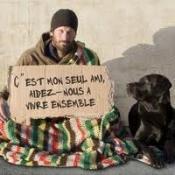 Pétition : Non au kidnapping et à l'exécution de chiens sur Rennes !