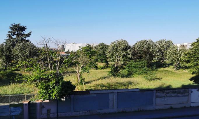 Pétition : Sauvons les arbres de la Cartoucherie à Toulouse