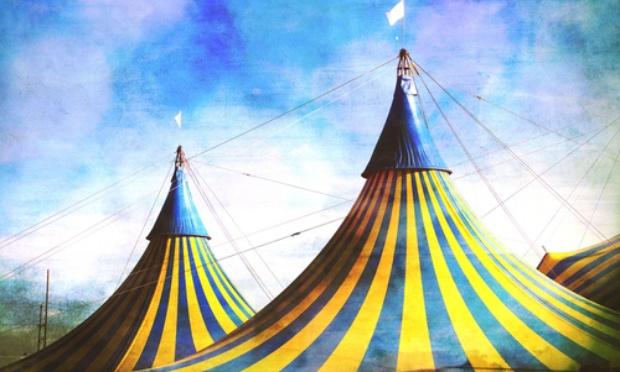 Interdire les cirques avec animaux à Rive-de-Gier(42)