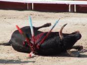Pétition : Ensemble arrêtons la tauromachie en France