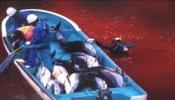 Pétition : Pour que les médias français parlent des massacres de cétacés à Taiji, Japon.