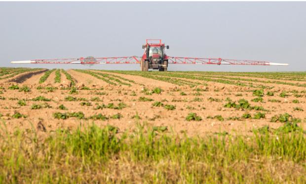 Pétition : NON à l'agro-industrie qui ravage la planète !
