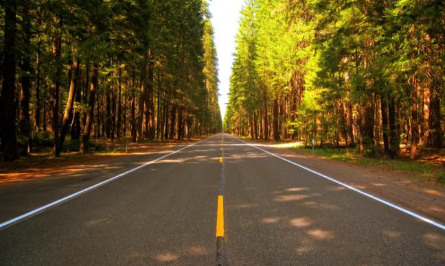 Pétition : POUR la limitation de vitesse à 110km sur les autoroutes