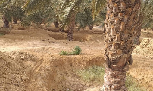 Enquête nationale sur les terres agricoles du domaine de l'Etat attribuées sous la forme de concession.