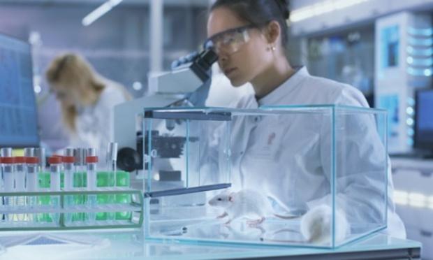 Annuler le décret de mars 2020 autorisant à vendre son animal de compagnie à un laboratoire